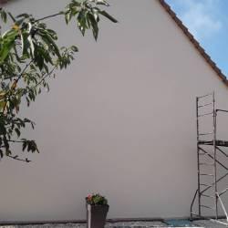 Décor façade arbre et fontaine avant